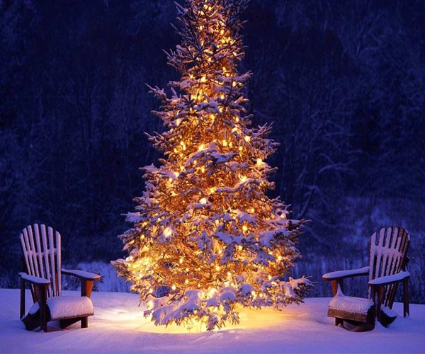 Offerte Natale Capodanno Befana Beb da Debora Pisa