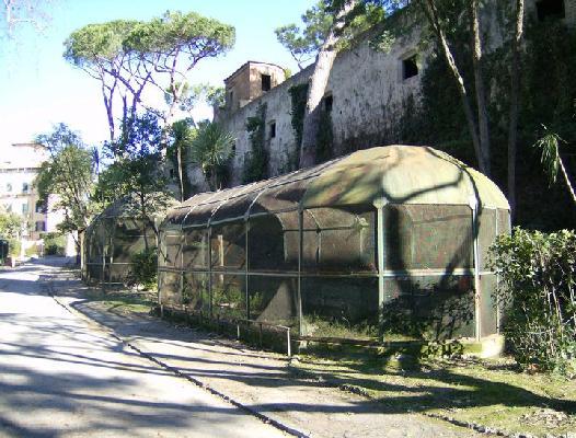 LE TANTE BELLEZZE di PISA.....